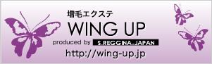 髪を多く見せるエクステ技術【WING UP】